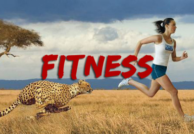 survival of the fitness thumbnail